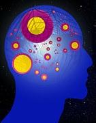 brain-194932__180