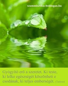 szeretet, idézet 5