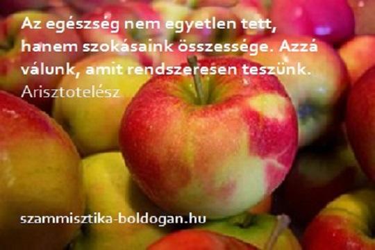 legjobb egészség idézetek Egészség IDÉZETEK   Étel és élet